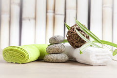 Wellness and spa concept Royalty Free Stock Photos