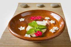 Wellness and spa: flowers,pebbles,water. Zen still life, isolated on white background Stock Photos