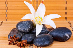 Wellness spa treatments Royalty Free Stock Image