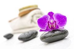 Wellness still life Stock Photography
