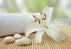 Wellness Still Life Pebbles And White Lily Stock Images