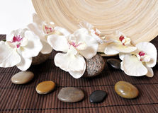 Wellness stones orchids Royalty Free Stock Photo