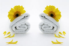 Wellness therapy towels. White towels symmetric rolled with yellow flower and petals isolated Royalty Free Stock Images