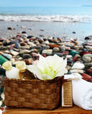 Wellness things - soap, lotion, towel Royalty Free Stock Image