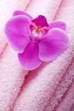 Wellness towel with pink orchid flower Royalty Free Stock Images