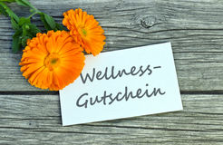 Wellness vouche stock photography