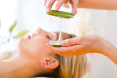 Wellness - woman having aloe vera application Stock Images