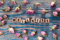Wellness on wooden cube. The words wellness write on wooden cubes with rose bud on blue color wood background stock photography