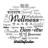 Wellness word cloud Royalty Free Stock Photo