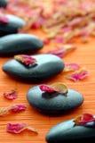Wellness-Zen-Pfad mit Steinen und den Blumenblättern in einem SP Lizenzfreies Stockfoto