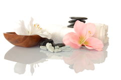 Wellness-Zen und -badekurort Stockbilder