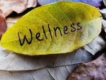Wellnessconcept op blad wordt geschreven dat stock fotografie