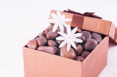 Wellnessgift in een bronsdoos met witte Jasmijnbloemen stock fotografie