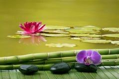 Wellnessumwelt mit schwarzen Steinen und Orchidee stockfotos