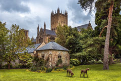 Wells Abbey, Somerset, England. Wells Cathedral (Cathedral Church of Saint Andrew), Wells Abbey and park on sunny day, Somerset, England Stock Photos
