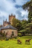 Wells-Abtei, Somerset, England Stockbild