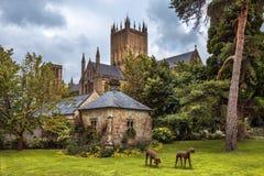 Wells-Abtei, Somerset, England Stockfotos