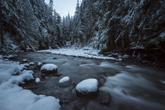 Wells Creek Frost. Winter falls along Wells Creek in Snoqualmie National Forest, North Cascades, Washington State, USA Stock Image