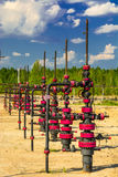 Wells qui extraient l'huile à partir du champ en Sibérie Image libre de droits