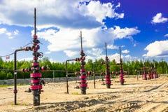 Wells qui extraient l'huile à partir du champ en Sibérie Image stock