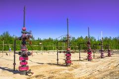 Wells qui extraient l'huile à partir du champ en Sibérie Photo stock