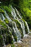 Wellspring and cascade at Tara mountain and national park Stock Photos