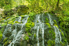 Wellspring with small cascades at Tara mountain and national park Stock Images