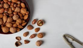Welnuts nella vista di legno del piatto da sopra Immagini Stock Libere da Diritti