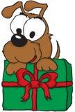 Welpe, der ein Weihnachtsgeschenk anhält Stockbilder