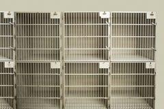 Welpe in einem Käfig Lizenzfreie Stockfotografie
