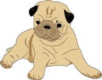 Welpe Pug stock abbildung