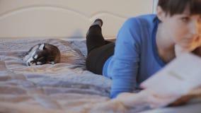 Welpen-sibirischer Husky und Mädchen mit einem Buch auf dem Bett, Transportwagen stock video
