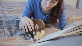 Welpensibirischer husky und -mädchen mit einem Buch auf dem Bett stock footage