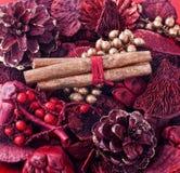 Welriekend mengsel van gedroogde bloemen en kruiden Royalty-vrije Stock Foto's