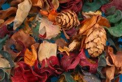 Welriekend mengsel van gedroogde bloemen en kruiden royalty-vrije stock afbeelding