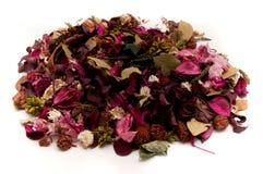 Welriekend mengsel van gedroogde bloemen en kruiden Stock Afbeelding