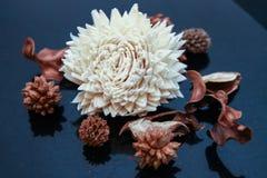 Welriekend mengsel van gedroogde bloemen en kruiden - droge geurige bloemen en installaties Royalty-vrije Stock Afbeelding