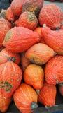 Welriekend mengsel van gedroogde bloemen en kruiden van oranje oktoberpompoenen royalty-vrije stock afbeeldingen