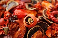 Welriekend mengsel van gedroogde bloemen en kruiden in rood/sinaasappel royalty-vrije stock fotografie