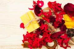 Welriekend mengsel van gedroogde bloemen en kruidenmango en Papaja Stock Afbeelding
