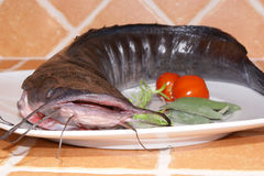Wels prepared as food. On a plate Stock Photo