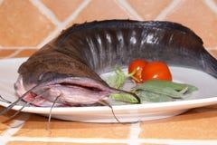 Wels prepared as food Stock Photo