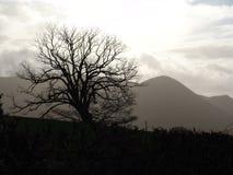 Welse heuvels in de winter Royalty-vrije Stock Foto