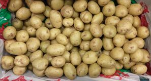 Welsh baby potatoes on sale Stock Images