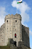 Welsh Castle. Cardiff castle on a sunny day, with the Welsh flag flying about it royalty free stock photo