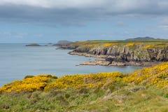 Welsh Coast Royalty Free Stock Photo