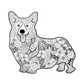 Welsh Corgi Dog doodle. Illustration Welsh Corgi Dog was created in doodling style in black and white colors. Painted image is on white background. It can be royalty free illustration
