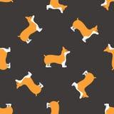 Welsh corgi dog seamless. This is welsh corgi dog seamless design Royalty Free Stock Photography