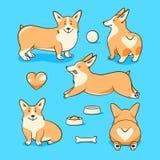 Welsh corgi dog. Vector illustration set with a heart royalty free illustration