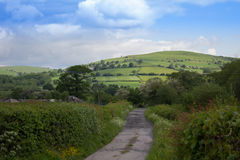 Welsh Country Lane Stock Image